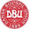 Dänemark WM Trikot